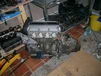 CIMG2309.JPG